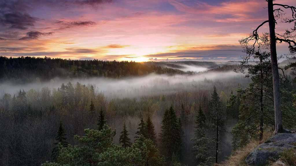 Nuuksio National Park, Finland