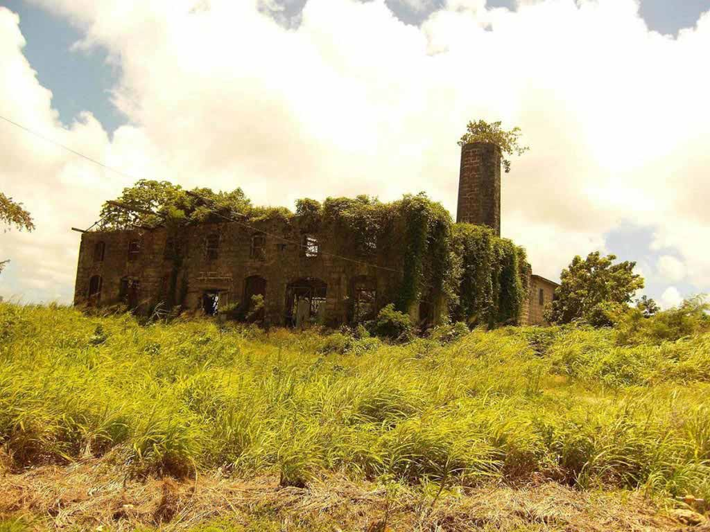 Abandoned distillery in Barbados