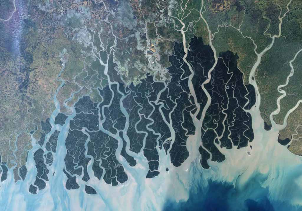 largest remaining tract of mangrove forest in the world. Bangladesh