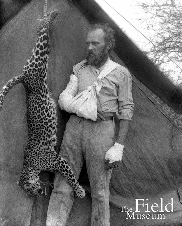 Carl Akeley posed with the leopard he killed with his bare hands after it attacked him, 1896
