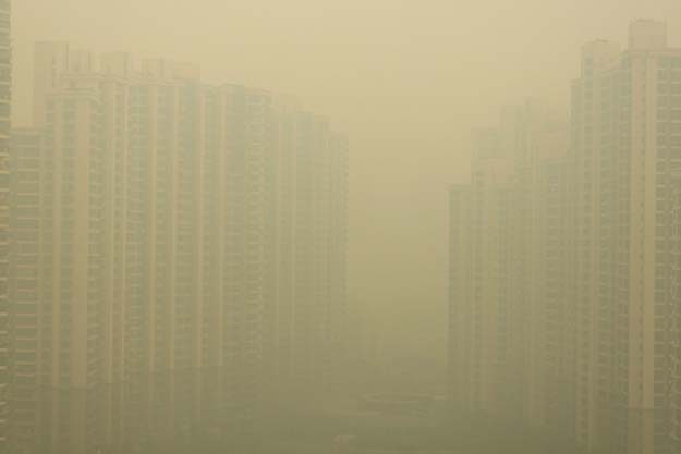 In Shanghai they are experiencing the worst air pollution on record. Over 70 percent of China's rivers and lakes are now too toxic for animals to drink from. Visibility in some parts of China was reduced to less than 5 meters.