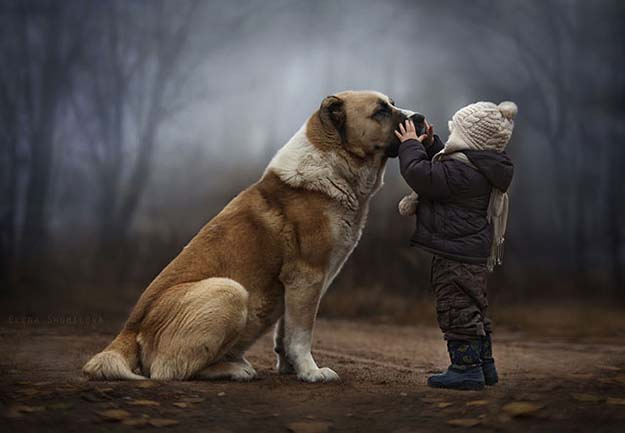 Elena Shumilova Takes Absolutely Beautiful Pictures Of Her Child With Animals