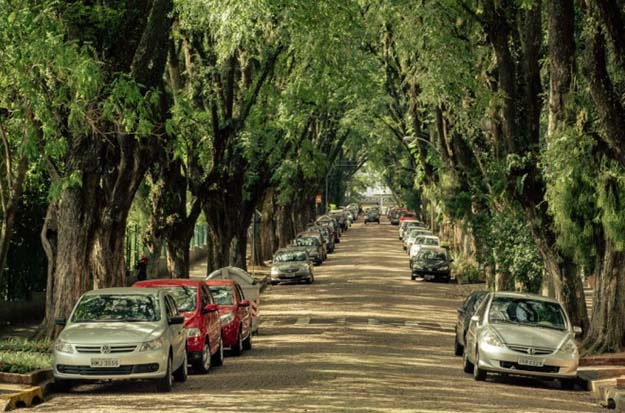 The Hidden Street of Porto Alegre Brazil is Probably the Most Beautiful Street in the World
