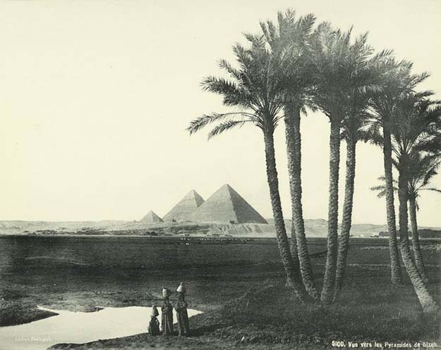 View Towards the Pyramids of Giza