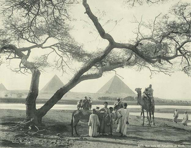 View of the Giza Pyramids